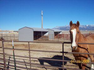 Horse Port